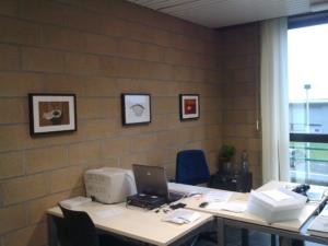 Les premiers bureaux d'Universem à Gembloux en 2009